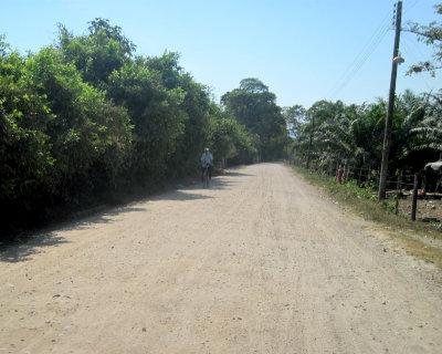 Alcaldía de Zona Bananera